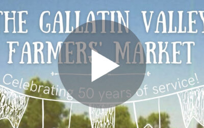 The GVFM is Turning 50!